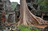 Angkor (Siem Reap, Cambodia)
