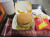 New Delhi McDonalds maharaja mac