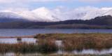 The Glen Luss hills from RSPB Loch Lomond
