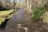 River Sorn near Bridgend, Islay