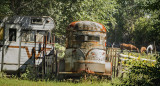 Horse Trailer and Old Motor Home