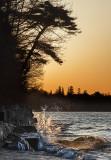Cobourg Shores