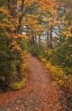 Colonel Maude Trail