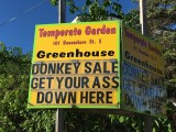 Funny Signs ( 3 Galleries)