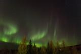 Aurora_9910