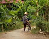 Bicycle Rider on Evergreen Island