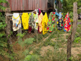 Laundry Day in Koh Chen
