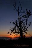 Copalis Beach Sunset