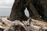 Driftwood on Ruby Beach