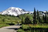Pathway on Mt Rainier