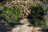 Monet's Final Resting Place