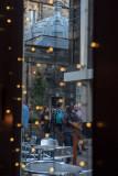 Through the Rosehip Window