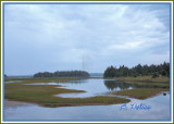 Forchu ~ Cape Breton Island