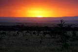 Coucher de soleil chez les Masai