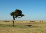 Masai Mara NR