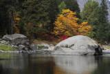 Fall Foliage, Wenatchee River