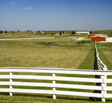 White fences, red barns
