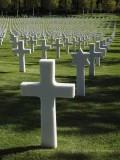 We Honor Their Sacrifice