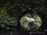 View Through a Culvert
