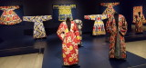 Houston Museum of Fine Arts - Ikat