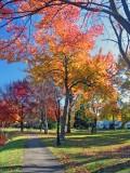 Windsor, CT 08