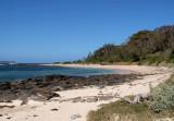 Beach on Broulee Island