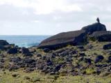 Guarding the fallen moai