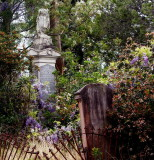 Wisteria ornaments an old monument