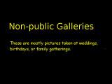Non-public Galleries