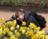Serious about daffodils
