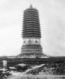 (009) Peking