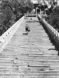 (109) Wu tái shan.  Pú sa tien