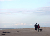 Man, woman, dog, beach, sky (the essentials)