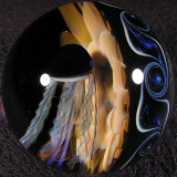 #7: Exploring Electric Eel Size: 1.93 Price: $240