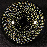 Unknown, Golden Hypnosis Size: 1.70 Price: SOLD