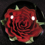 Red Roser, Red Roser Size: 1.53 Price: SOLD
