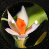 #296: Elizabeth Johnston: Spring Fresh Size: 0.99 Price: $50