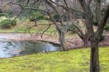 Missouri Botanical Garden (Shaw's Gardens) 112918