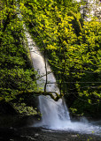 Late afternoon at Horsetail Falls along the Columbia River Gorge