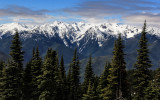 Hurricane Ridge from the Hurricane Hill Road in Olympic National Park