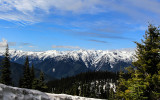 Hurricane Ridge viewed from along the Hurricane Hill Road in Olympic National Park