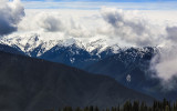 Hurricane Ridge in the clouds in Olympic National Park