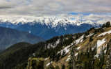 View of Hurricane Ridge from the park road in Olympic National Park