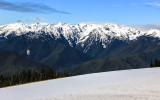 Hurricane Ridge and the Bailey Range from the Visitor Center in Olympic National Park