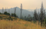 The hills during the 2018 Ferguson Fire in Yosemite National Park