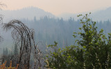 Smoke fills the air during the 2018 Ferguson Fire in Yosemite National Park