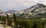 Polly Dome (left), Pywiack Dome, Medlicott Dome (center rear) and Tenaya Peak along the Tioga Road in Yosemite National Park