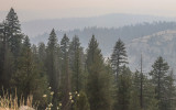 Smoke blankets hills and forests along the southern end of the Tioga Road in Yosemite National Park