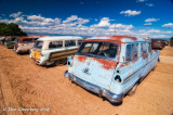 Various 50's Vintage Ford Wagons