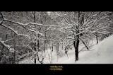 Great Snowfall 2018 - Hondarribia SPAIN
